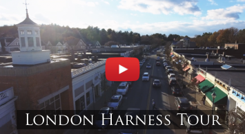 Video Tour Of London Harness