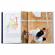 Graphic Image The Science of Hitting in White
